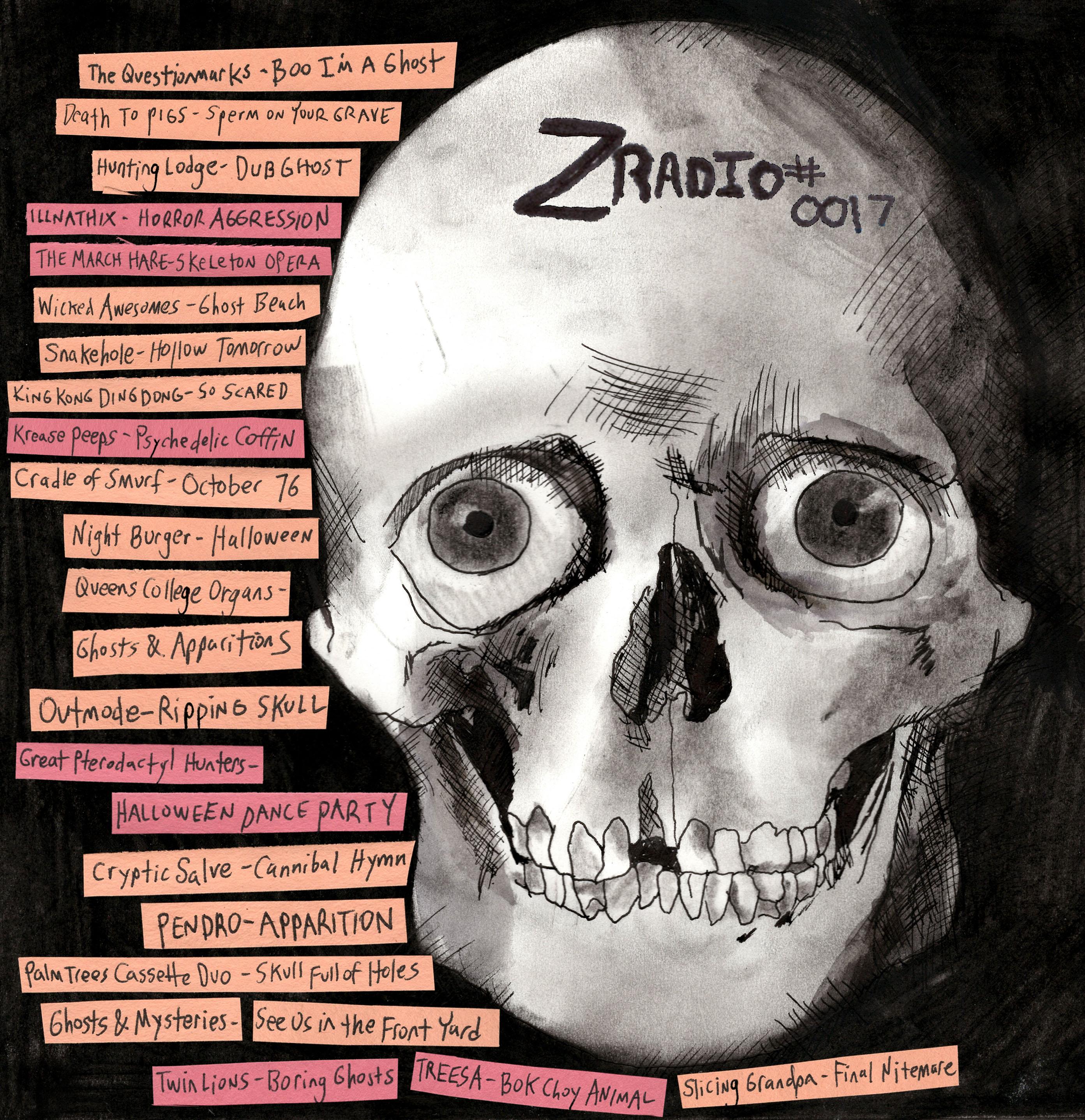 Z Radio The Best In Diy Music